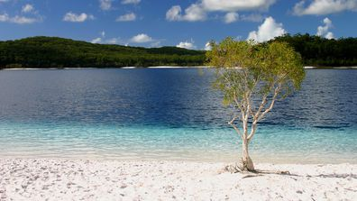 Lake Mckenzie is famous for its ombre shoreline.