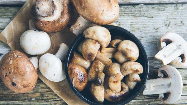 Magnificent mushrooms