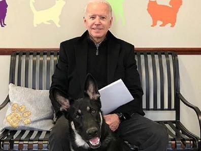 Joe and Jill Biden dog