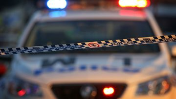 Two men have been charged over an alleged road rage attack in Greenacre, southwest Sydney.