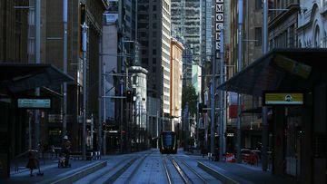 An empty George Street in Sydney's CBD.