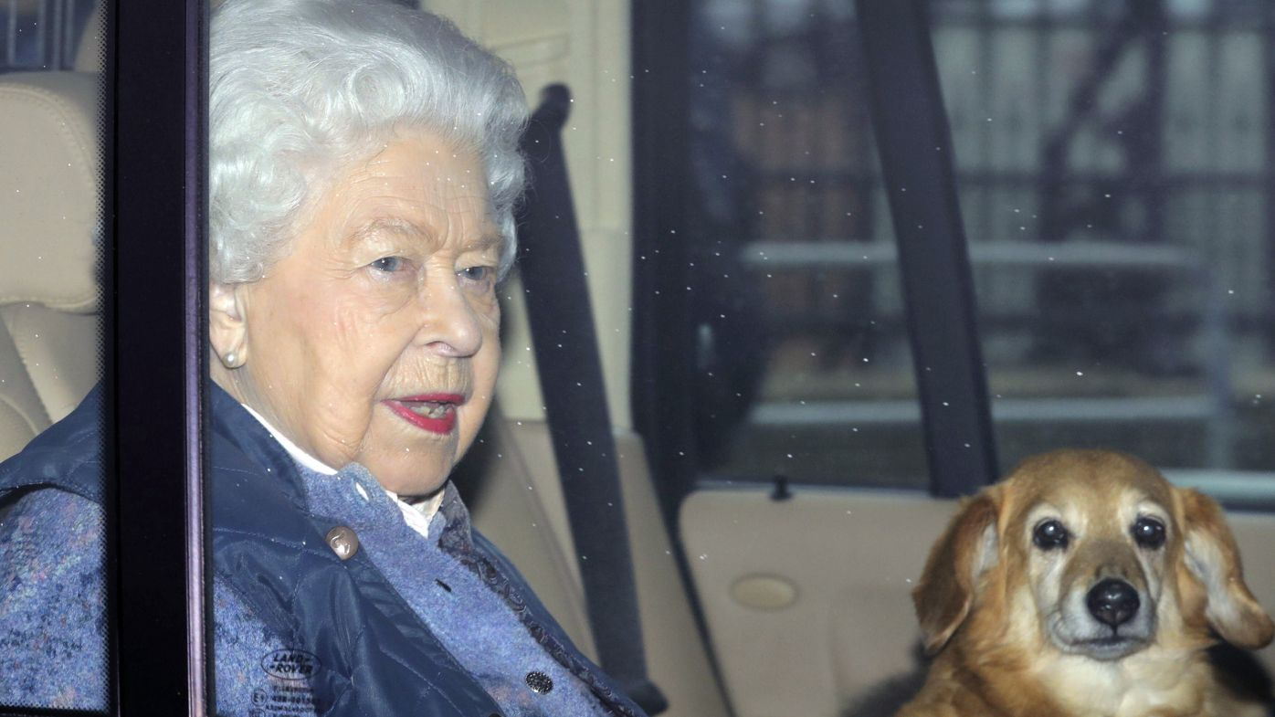 'We stand ready': the Queen's stirring call for solidarity against coronavirus – 9Honey