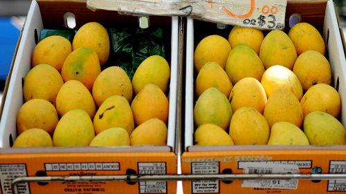 Kensington Pride mangoes. (AAP)