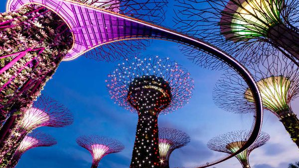 Singapore supertree at night