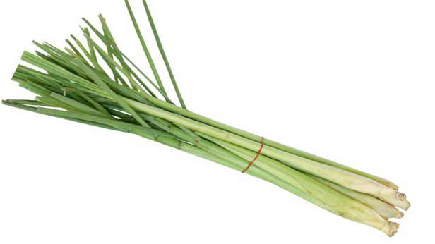 Lemongrass recipes