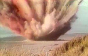 Exploding whale true story used as COVID-19 warning