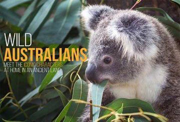 Wild Australians