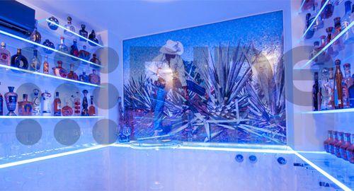 Inside the tequila room of cocaine boss Owen Hanson. Source: 3Ten Development