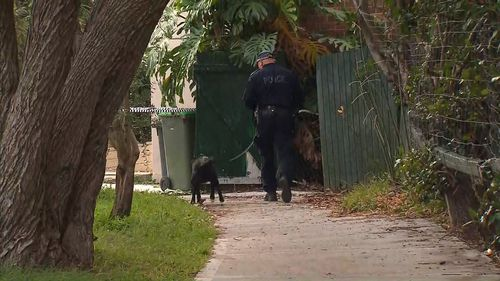 Police this morning with a sniffer dog at the scene. Picture: 9News