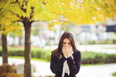 <strong>Allergy headache</strong>