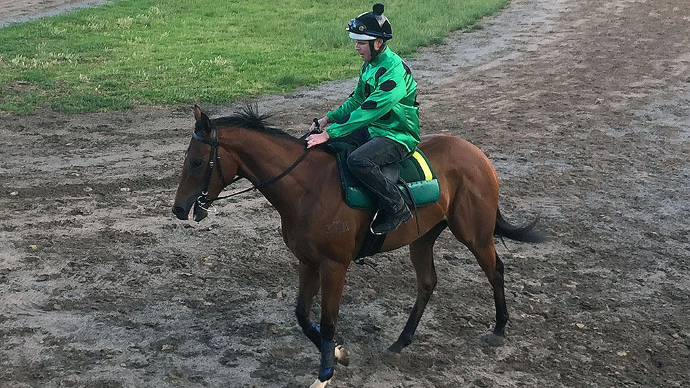 Flemington jump-out for Black Caviar filly