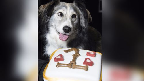 """Dennis with his """"one year"""" birthday cake. (SWNS)"""