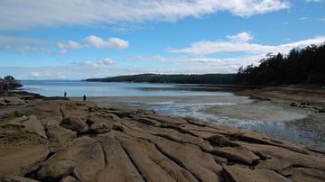 A 14th foot has washed up on Gabriola Island in British Columbia, Canada.