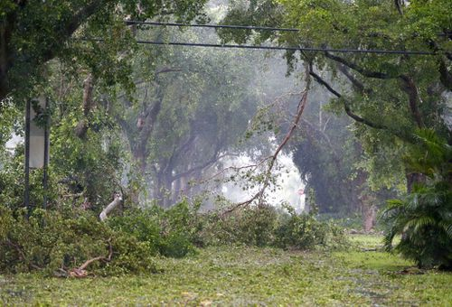 Debris fills the tree-lined streets of a residential area in Coral Gables. (AP)