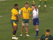 Wallabies burned by controversial decision against South Africa
