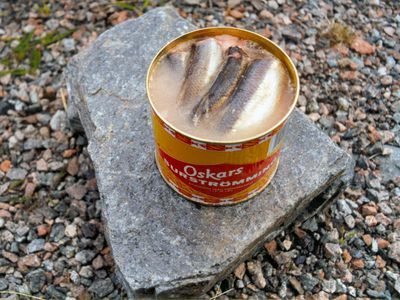 Indigenous to northern Sweden, surströmming is herring that is fermented in barrels for a couple of months, then put into tin cans for up to another year.