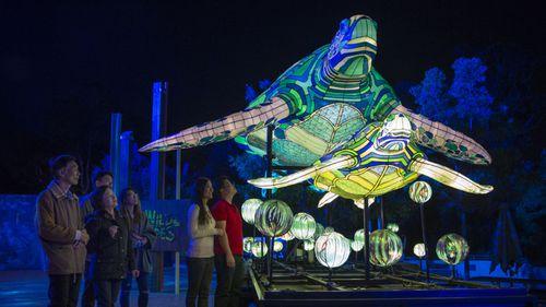 Turtles illuminated at Taronga Zoo.  (Destination NSW)