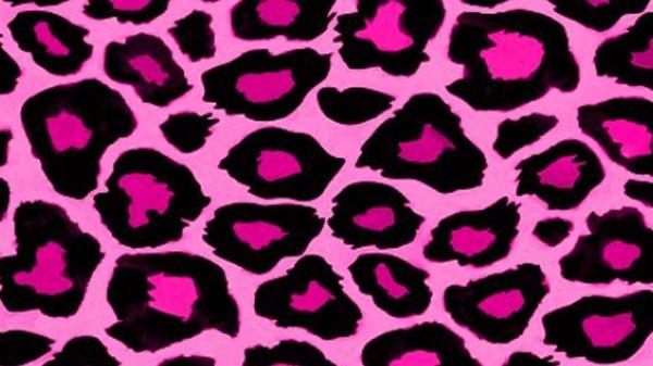 AKA The Pink Leopard