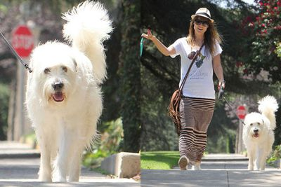 Olivia Wilde and her dog look as though they love eachother's company.