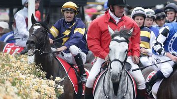 """These photos show the disturbing moment racehorse Araldo injured its leg after competing in the Melbourne Cup. (AAP) <b _tmplitem=""""1"""">WARNING - the following media contains graphic material</b>"""