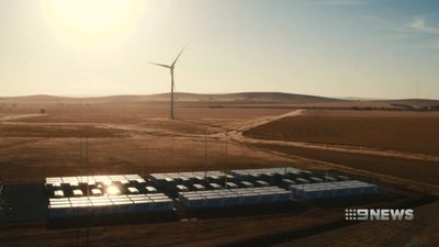 Queensland premier makes bid for Tesla batteries