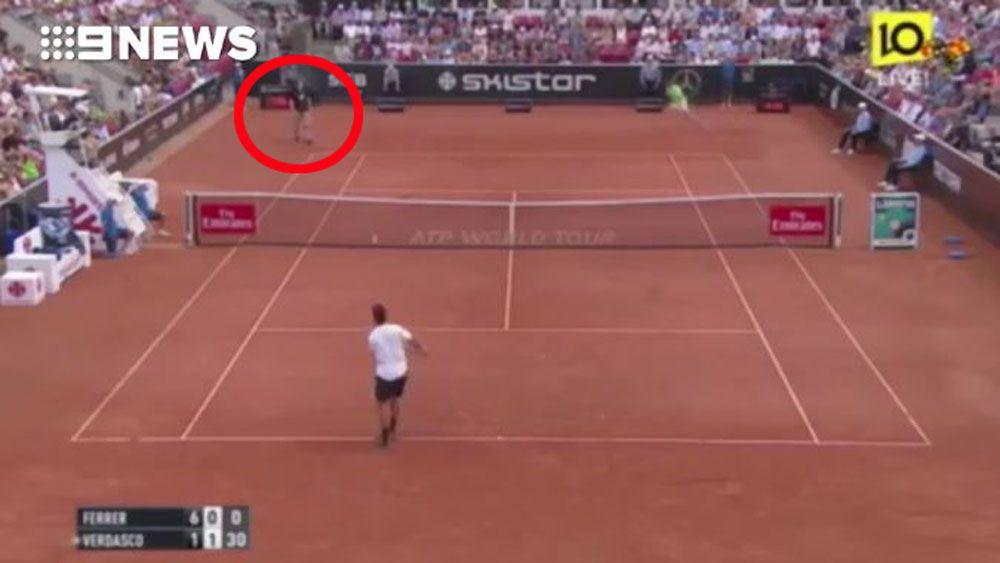 Man interrupts Swedish Open semi-final between Fernando Verdasco and David Ferrer with Nazi slogans