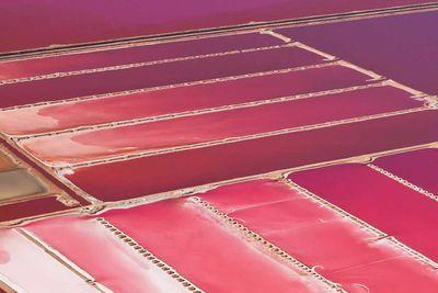 Australia S Stunning Pink Lakes 4 Of 14attribution Istock