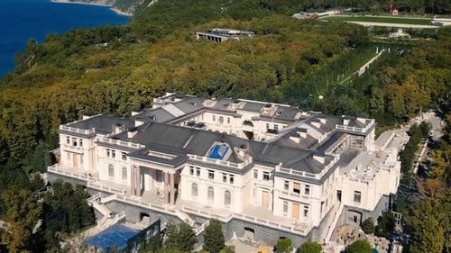 Alexei Navalny's team has released a video claiming Vladimir Putin has a palace worth $1.7b.