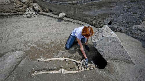 The skeleton, found facing face-up, appears to have been crushed by a large stone during the catastrophe. Picture: AAP.