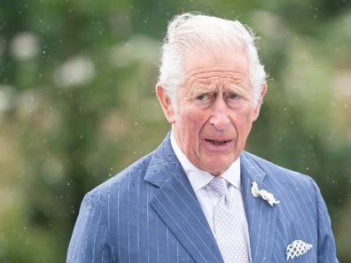 Prince Charles cash for honours comment