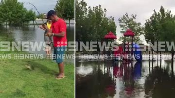 Gone fishing: Playgrounds flood after summer downpour