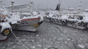 Thousands of tourists were stranded on the island of Jeju in Korea where the flights were cancelled