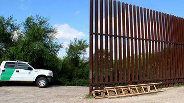 Scott Nicol Texas Border Wall cheap wooden ladders