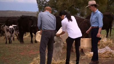 Royal couple hands on at drought ravaged farm