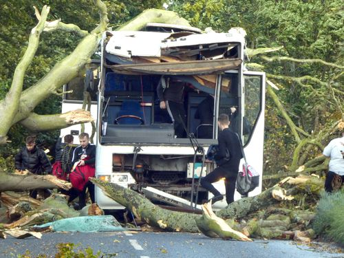 Storm Ali caused a tree to fall onto the vehicle in Kincaple, near Guardbridge in Fife.