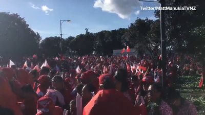 Extraordinary scenes as Tongan fans descend on Mt Smart Stadium ahead of Test against Kangaroos