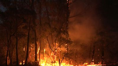 Teen boys who 'started fire' during total ban charged