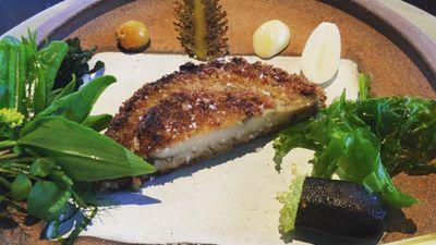 Abalone schnitzel and bush condiments. (Instagram/doctorhesh)