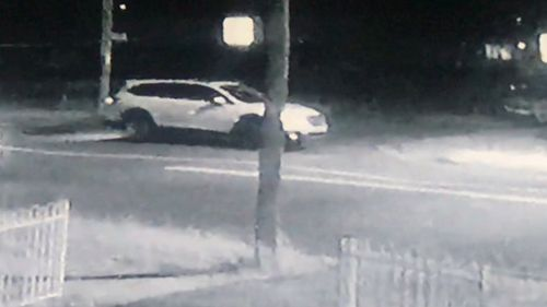 Cambridge Park carjacking