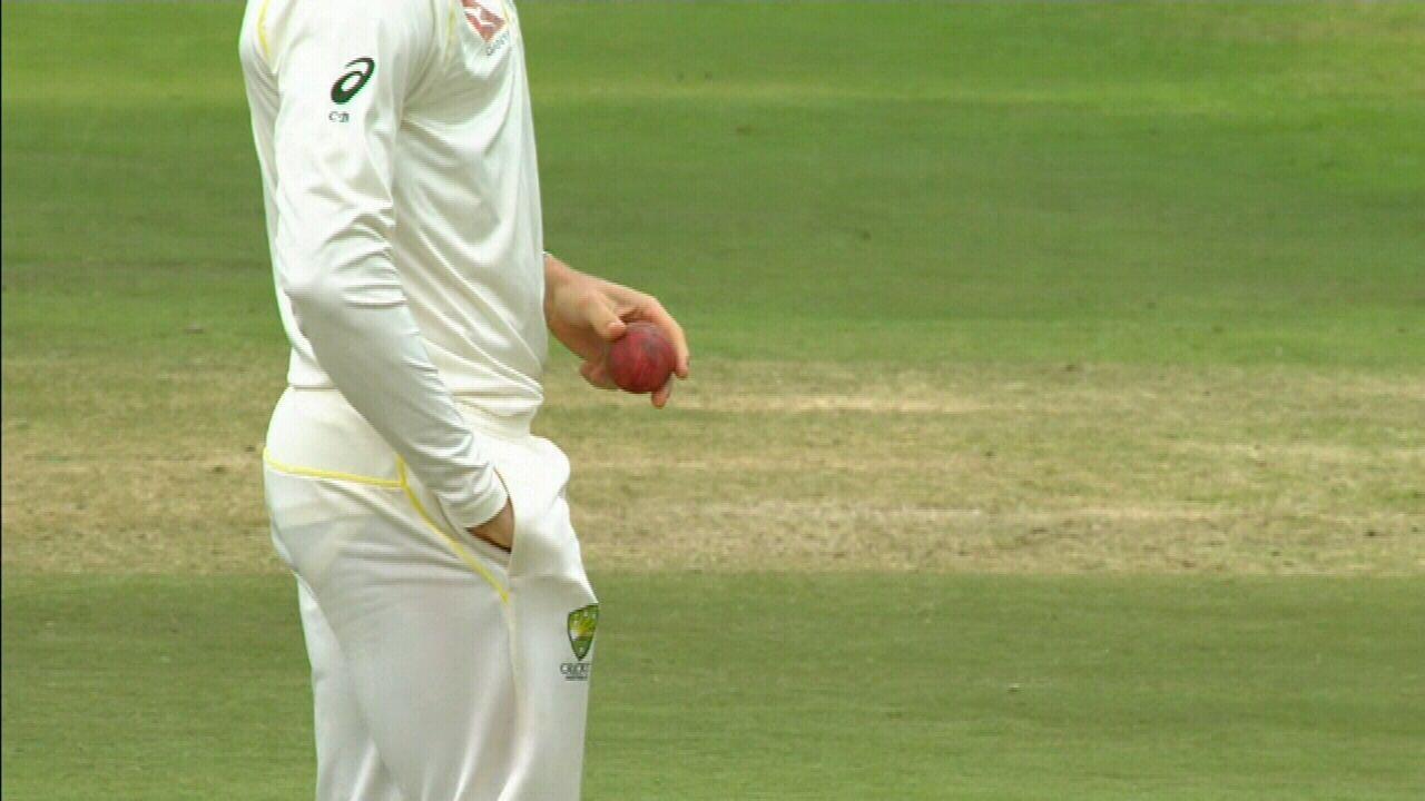 Cricket News Australian Captain Steve Smith Resign Ball
