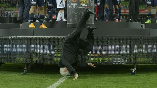 Mr Lowy went head-first into the pitch at AAMI Park in Melbourne. (AAP)