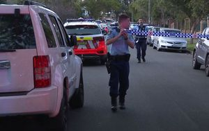 Woman fighting for her life after alleged stabbing at home