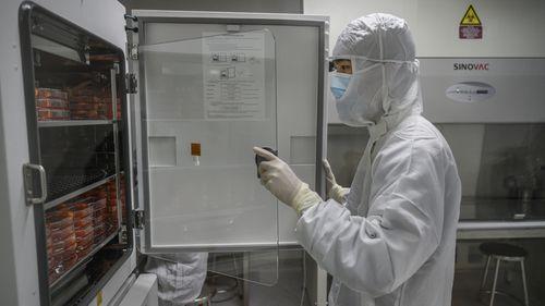 Sinovac Biotech lab