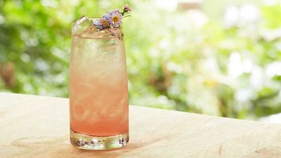 "Recipe: <a href="" http://kitchen.nine.com.au/2017/01/25/16/58/sean-forsyths-orris-root-floradora-cocktail"" target=""_top"">Sean Forsyth's orris root floradora cocktail</a>"