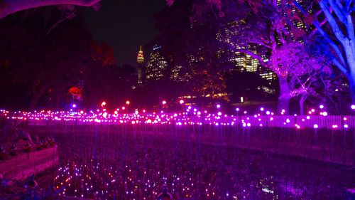 There are 17 installations tucked away in the Royal Botanical Gardens, along with food stalls and bars. (Destination NSW)