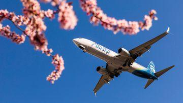 An Alaska Airlines plane.