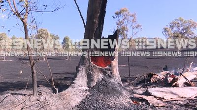 Residents 'prepare to leave' as out-of-control bushfire threatens homes