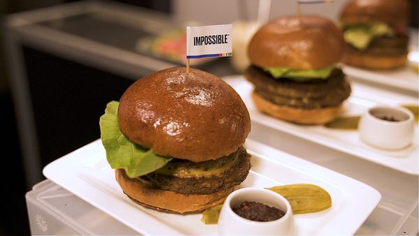 Air New Zealand serve up plant-based 'Impossible Burger'
