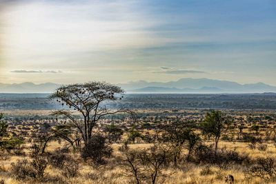 2. Samburu, Kenya