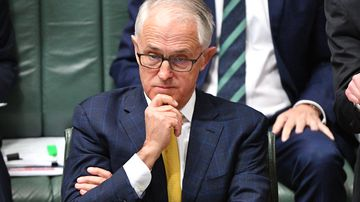 Turnbull taking control of NEG to placate party unrest